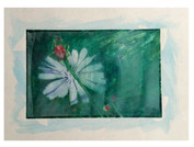 flower, © 2007 Mike Sweeney