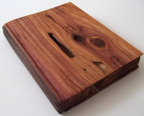 merged cedar: book of things we do not know