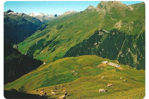 515 Kultur in Graubünden, zum Beispiel Alp Rischuna