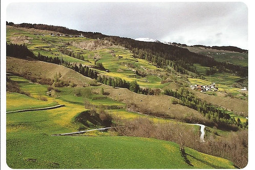 113 Kultur in Graubünden, z.B. in den lebendigen Strukturen am Schamserberg