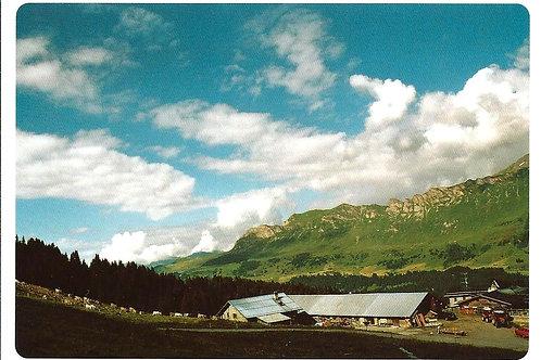 502 Kultur in Graubünden z.B. Alp Stätz auf der Lenzerheide