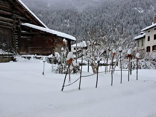 Sonntag im Schnee