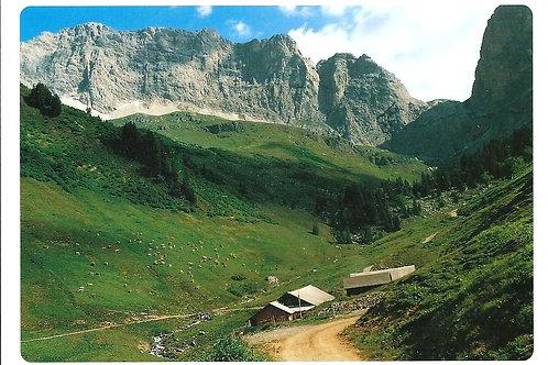 511 Kultur in Graubünden z.B. Grüscher Älpli im Prättigau