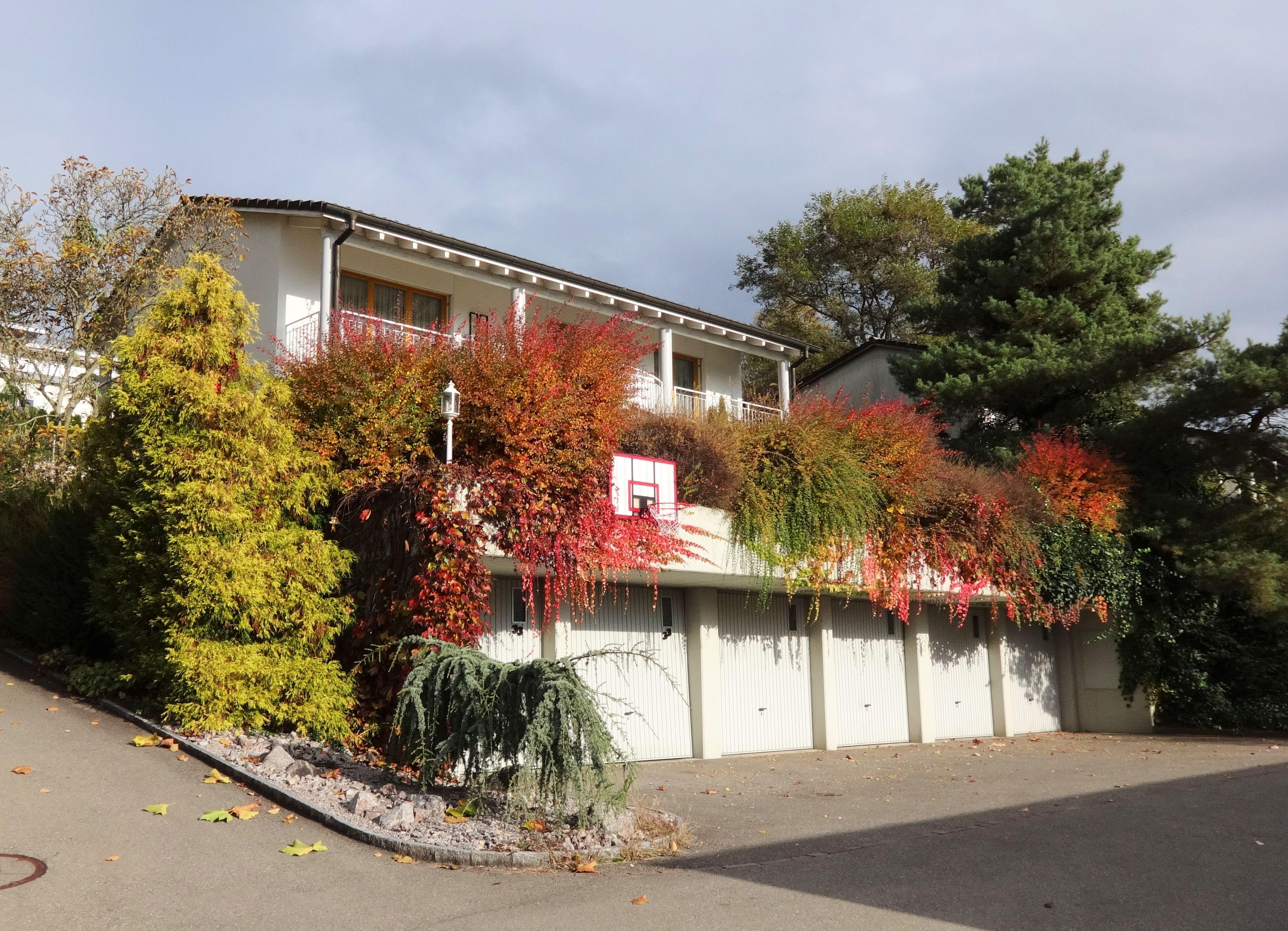 Das Haus im Herbst