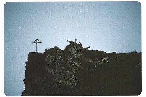 83 Gipfeltreffen mit Anton, Elke, Markus, ...