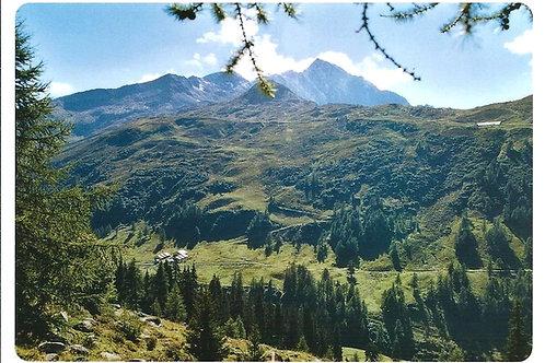 510 Kultur in Graubünden, zum Beispiel Alp Tanaz am Splügenpass