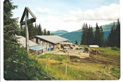 517 Kultur in Graubünden, zum Beispiel Alp Schlans