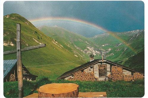 9 Alpwirtschaft ist ein Gewinn fürs Berggebiet