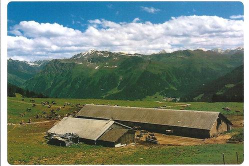 512 Kultur in Graubünden z.B. Saaser Alp Albeina im Prättigau