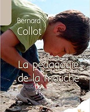 pédagogie_de_la_mouche.jpg