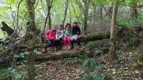 Vacances d'automne en forêt