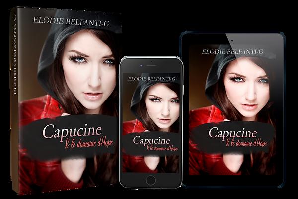 1 iphone - 1 tablette - 1 book Capucine.