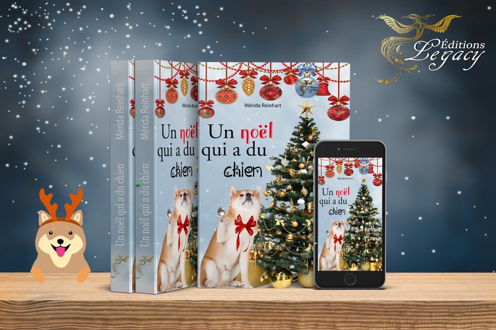 Mockup book - Un noel qui a du chien.png
