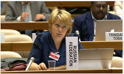 Alt-Олтян Ирина Юрьевна рабочая группа ООН по показателям и терминологии по снижению риска бедствий