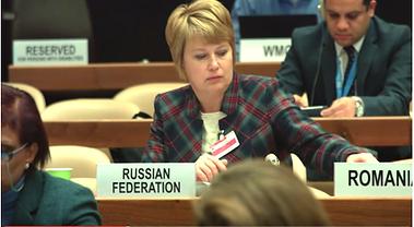 Alt-Олтян Ирина Мой город готовится ООН