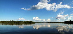 Amazonie, Panoramique