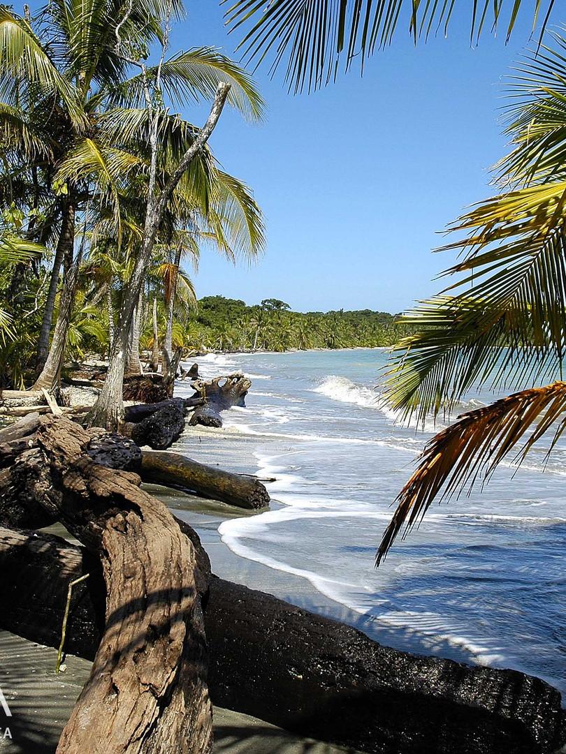 Tucaya Costa Rica - Plage des Caraibes s