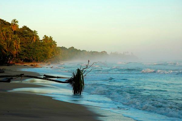 COSTA RICA CARAIBES.jpg