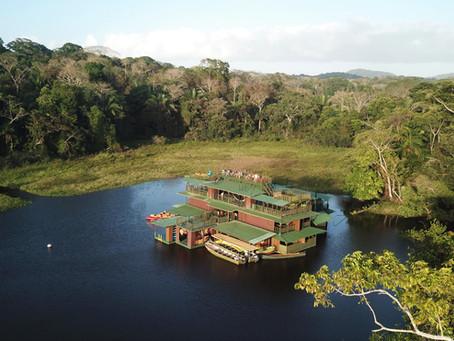 Jungle Land, un havre de paix dans une nature luxuriante