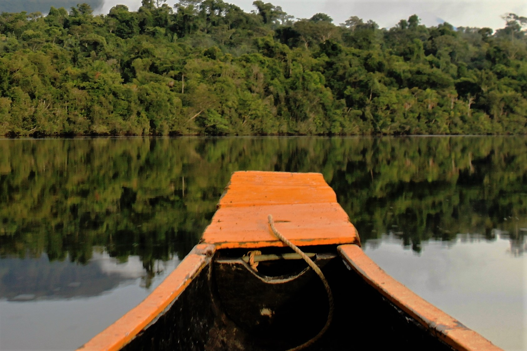 Amazonie pirogue