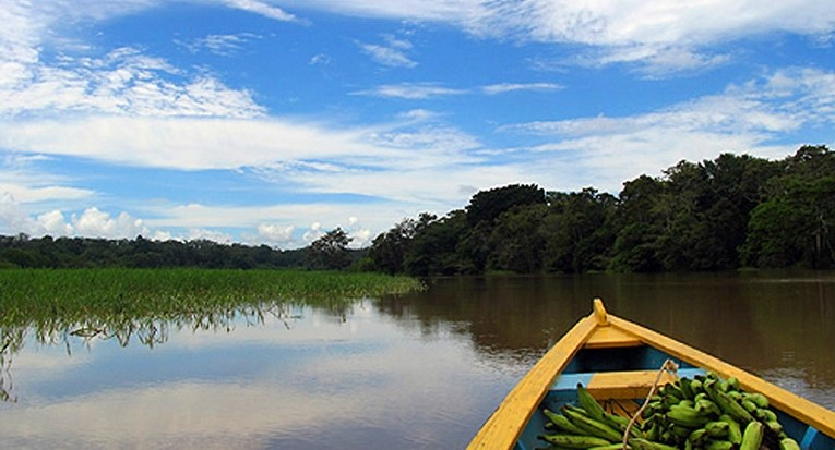 Amazonie, Saraiva