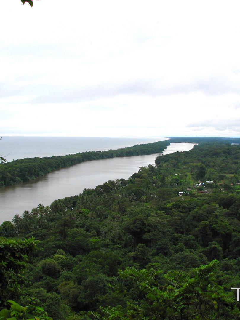 Tucaya Costa Rica -Tortuguero-Nationalpa