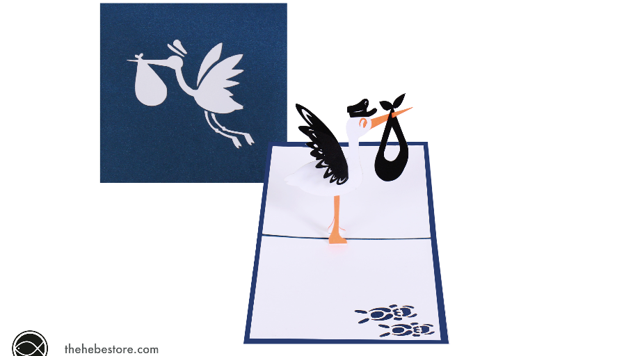 Blue Stork Baby