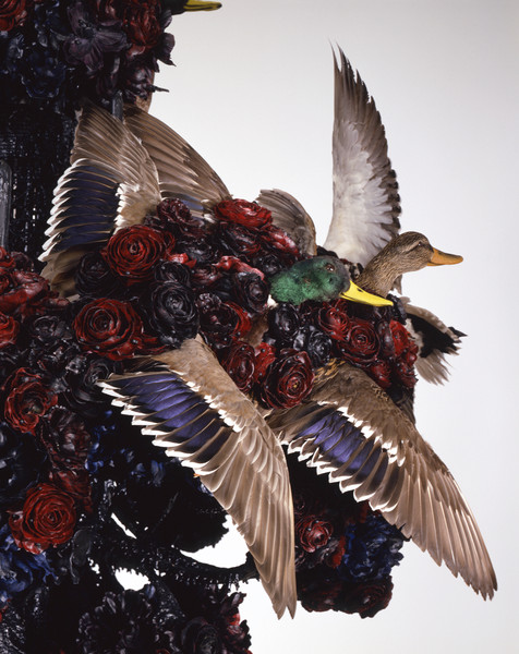 Untitled #1175 (La Notte), 2003 - 08, detail
