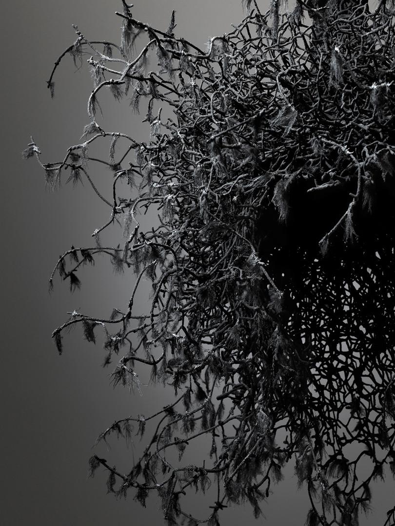 Untitled #1459 (Yōko Ogawa: The Memory Police), 2019, detail