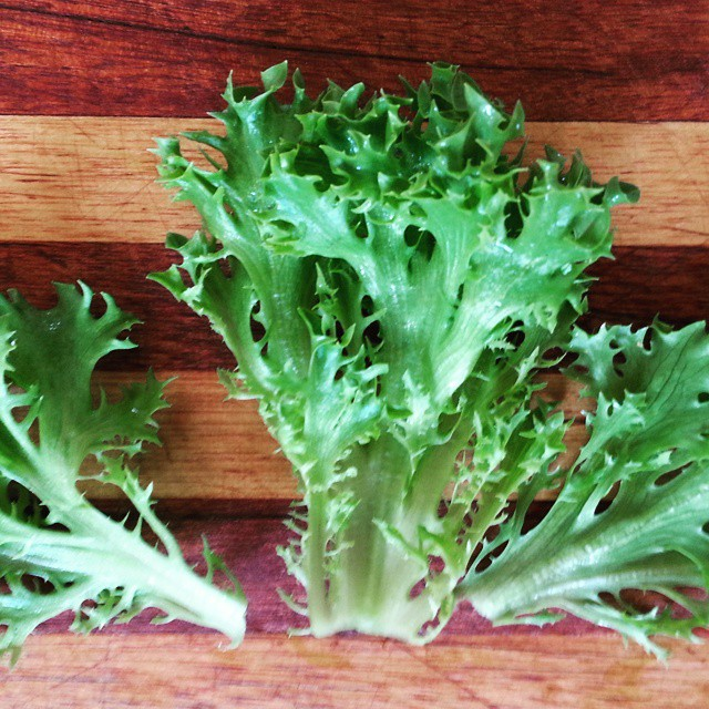 Instagram - Green sweet crisp lettuce leaves found in our Premium Salad Greens Mix