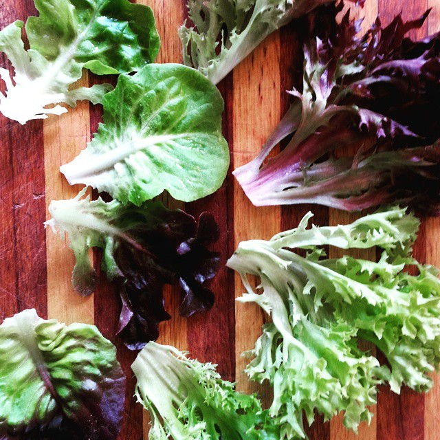 Instagram - The eight types of lettuce leaves in our Premium Salad Greens Mix: green and red butterc