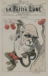 extrait de La Petite Lune, 1880, homme singe