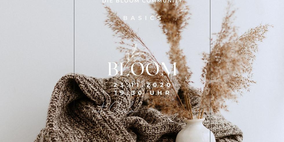 Bloom-Basics