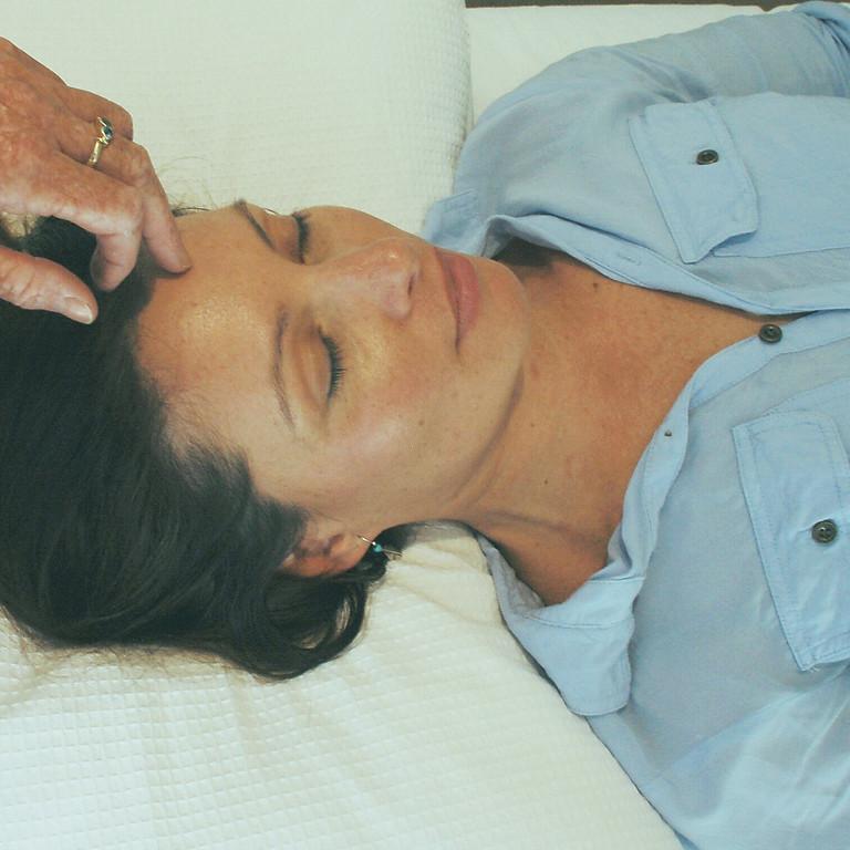 Hahnemann Healing Practitioner Training 6 days