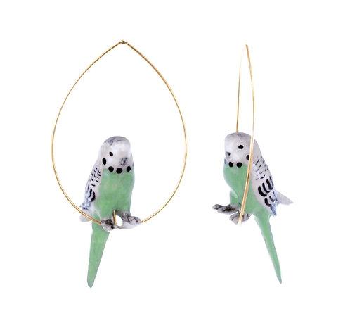Brincos Periquito verde