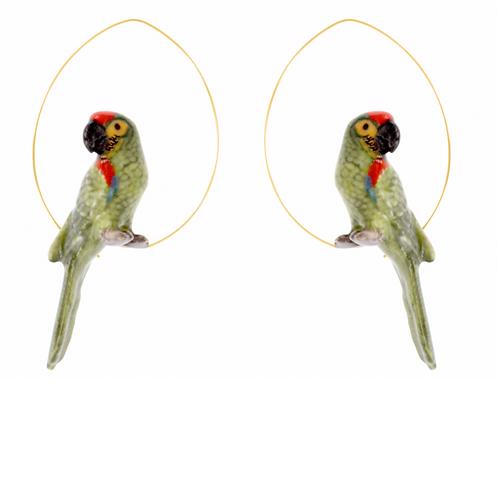Brincos Papagaio verde