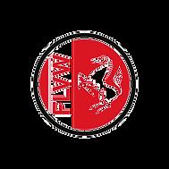 flvw_logo_bildmarke_rgb_edited.png