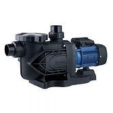 WT-75-S-Pro-SS-Pump-0.75Hp-300x300.jpg