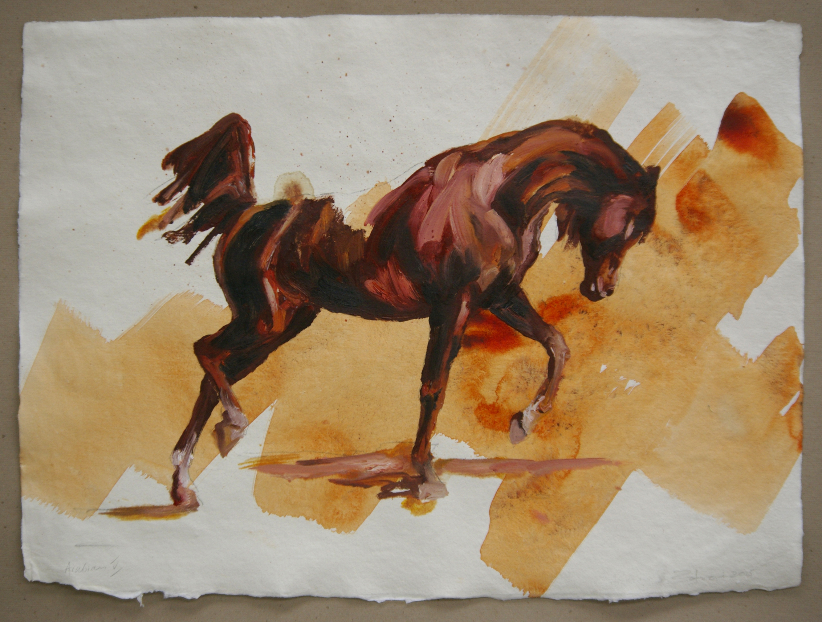 Arabian V (study)
