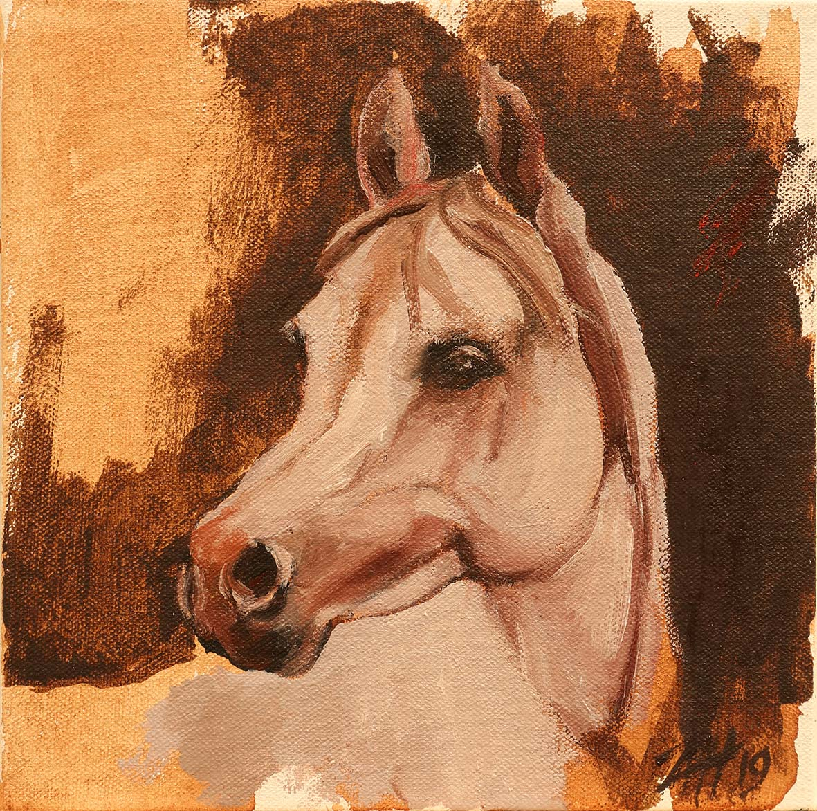 Equine Head Arab White (study 12)