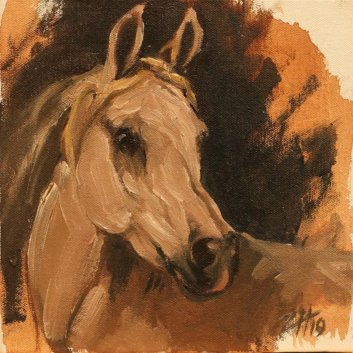Equine Head Arab White (study 29)