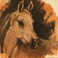 Equine Head Arab White (study 29)