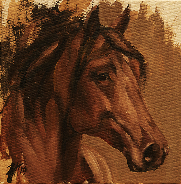 Equine Head Arab Chestnut (study 27)