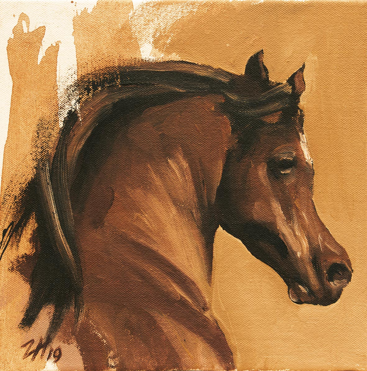 Equine Head Arab Chestnut (study 7)