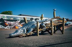 Crocodile on the pontoon