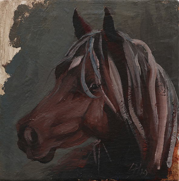 Equine Head Arab Chestnut (study 185