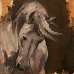 Equine Head Arab White (study  44)