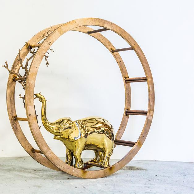 Rocky the Elephant by Jill Berelowitz