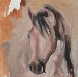Equine Head Arab White (study 30)