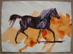 Arabian I (study)